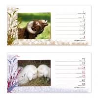 reference-kreativni-008-stolni-kalendar-schok